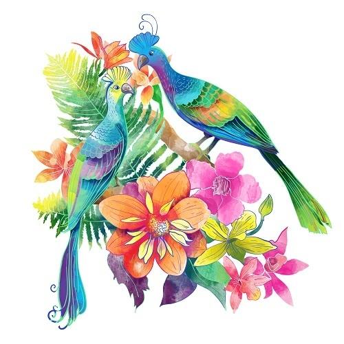 http://labell.ir/images/animal/animal-025.jpg