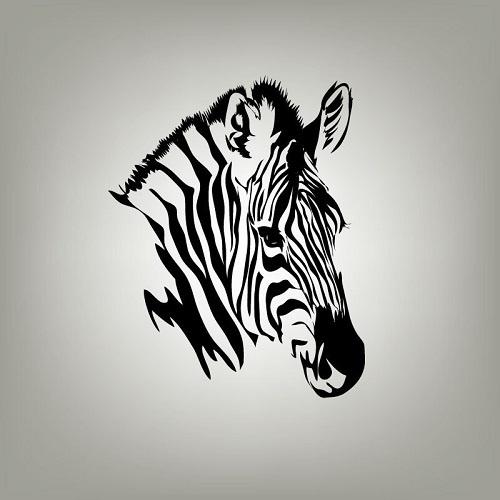 http://labell.ir/images/blackwhite/blackwhite-033.jpg