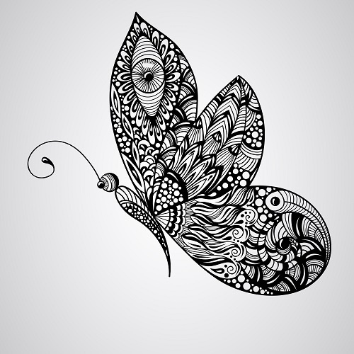 http://labell.ir/images/butterfly/butterfly-018.jpg