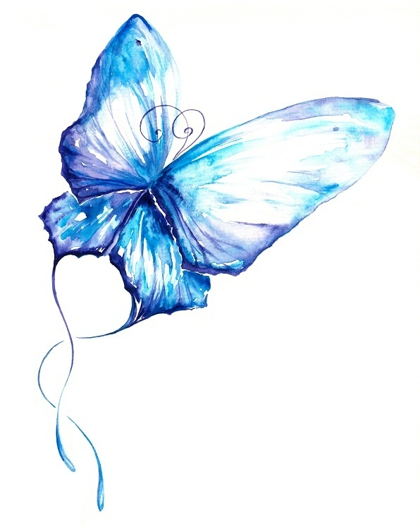 http://labell.ir/images/butterfly/butterfly-041.jpg