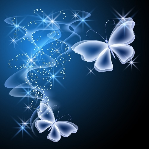 http://labell.ir/images/butterfly/butterfly-093.jpg