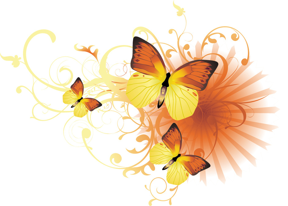 http://labell.ir/images/butterfly/butterfly-112.jpg