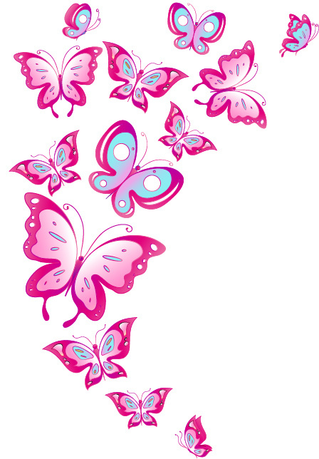 http://labell.ir/images/butterfly/butterfly-116.jpg