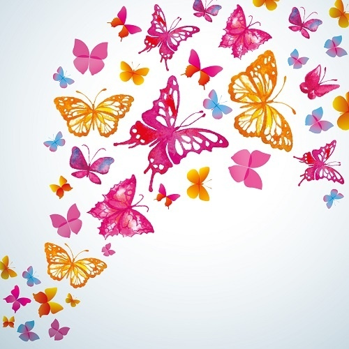 http://labell.ir/images/butterfly/butterfly-130.jpg