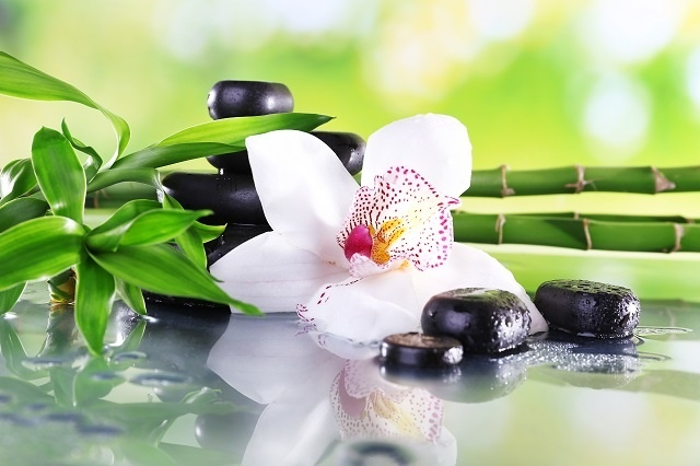 http://labell.ir/images/flowers/flowers-054.jpg