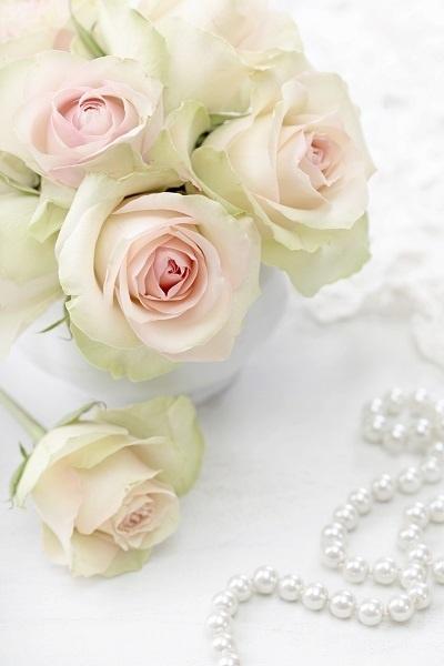http://labell.ir/images/flowers/flowers-091.jpg
