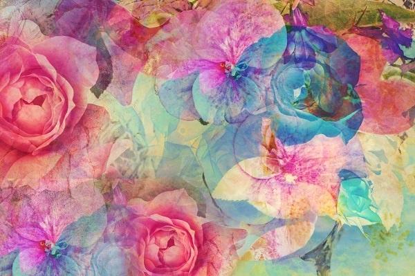 http://labell.ir/images/flowers/flowers-116.jpg