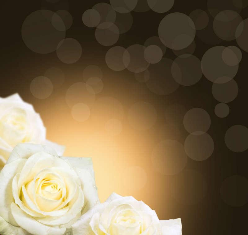 http://labell.ir/images/flowers/flowers-131.jpg