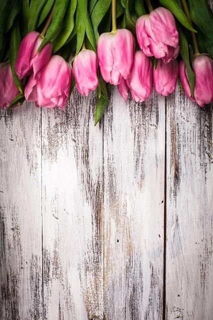 http://labell.ir/images/flowers/flowers-142.jpg