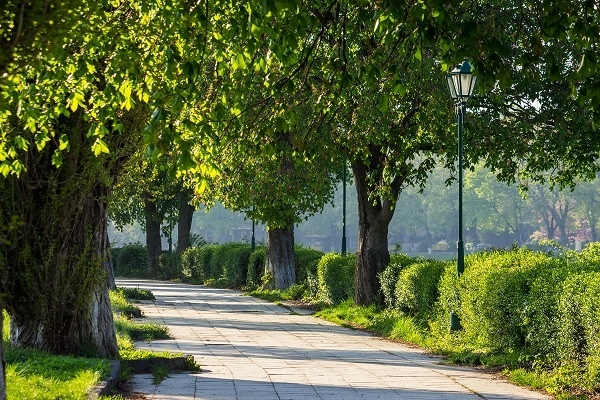 http://labell.ir/images/landscape/landscape-001.jpg