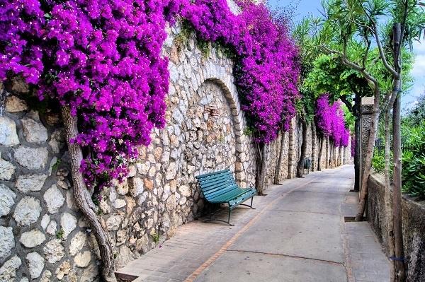 http://labell.ir/images/landscape/landscape-007.jpg