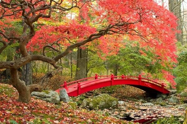 http://labell.ir/images/landscape/landscape-015.jpg