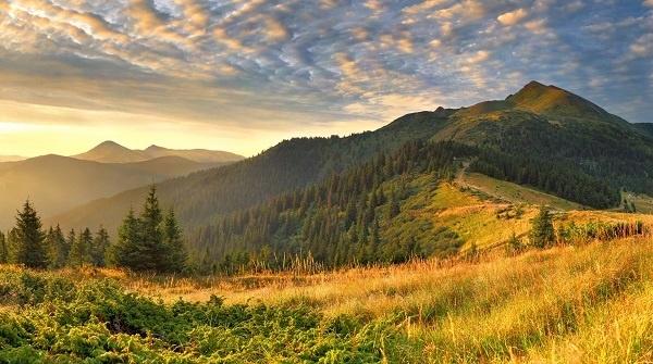 http://labell.ir/images/landscape/landscape-030.jpg
