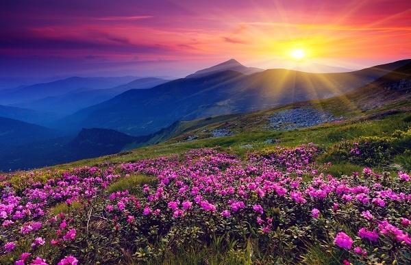 http://labell.ir/images/landscape/landscape-036.jpg