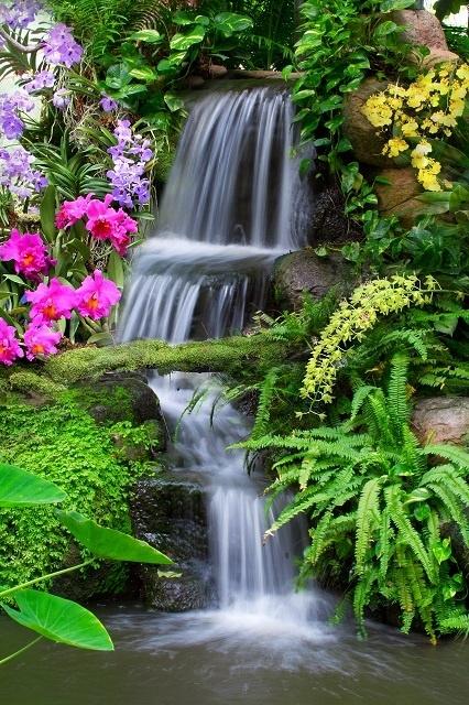 http://labell.ir/images/landscape/landscape-092.jpg