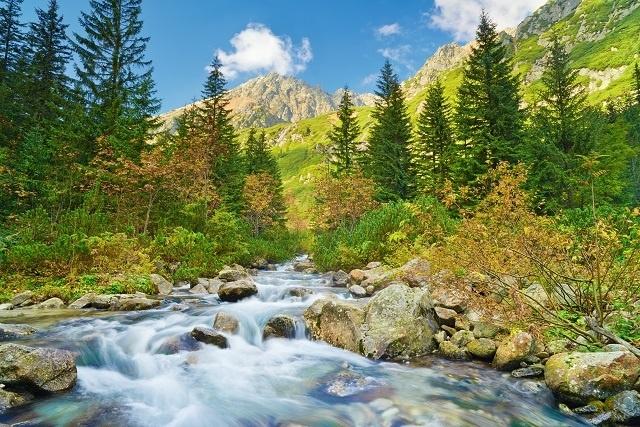 http://labell.ir/images/landscape/landscape-095.jpg