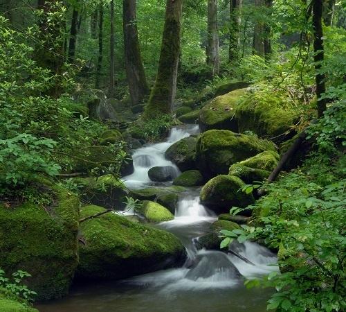 http://labell.ir/images/landscape/landscape-105.jpg