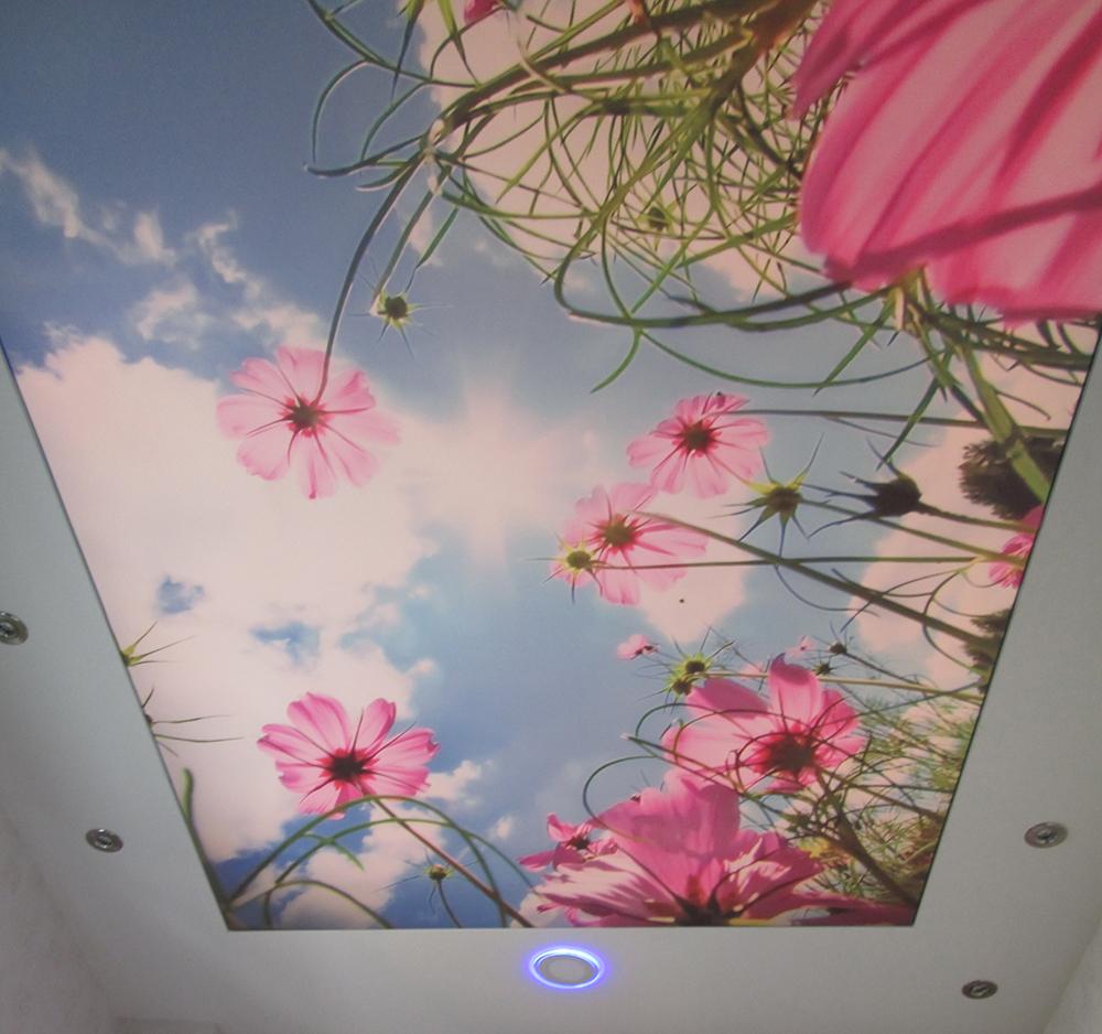 گل های نورانی