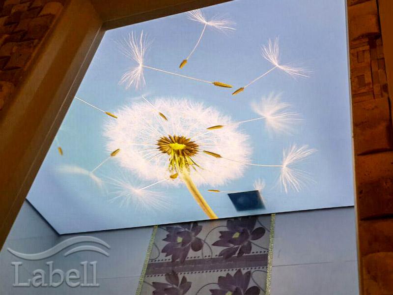 سقف چاپی