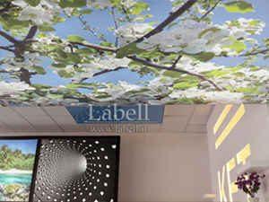 سقف کشسان چاپی – تالش – دفتر نمایندگی