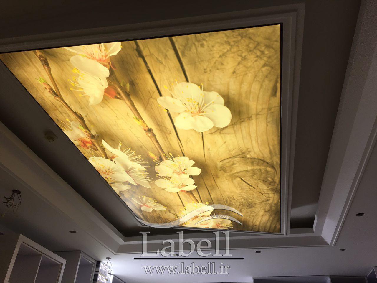 اجرای سقف کشسان چاپی در منزل مسکونی