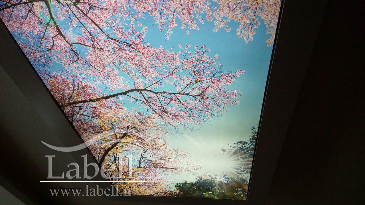 اجرای سقف کشسان چاپی همراه با نورپردازی – تنکابن