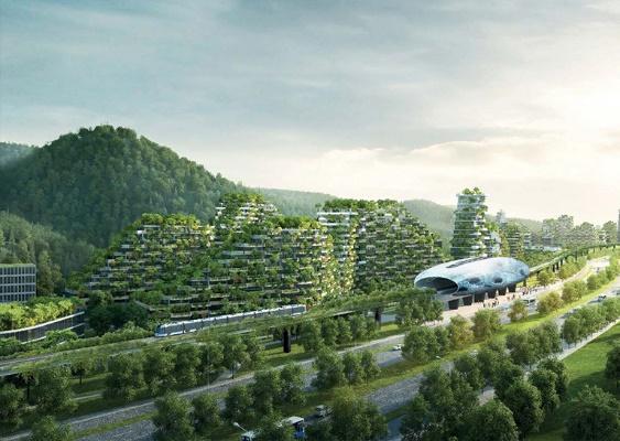 اولین شهر جنگلی با بیش از یک میلیون گیاه در چین