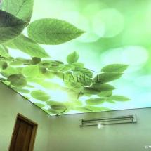 دفتر-کمپانی-در-خاورمیانه-استان-گلستان-شهرستان-گرگان-66