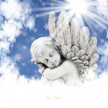 angels-فرشته ها (2)