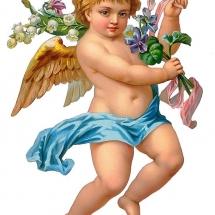 angels-فرشته ها (26)