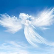 angels-فرشته ها (4)