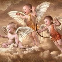 angels-فرشته ها (69)