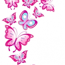 butterfly-پروانه (112)