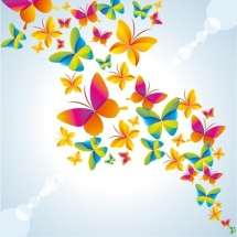 butterfly-پروانه (119)