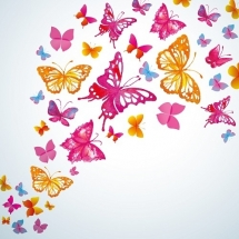 butterfly-پروانه (126)