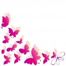 butterfly-پروانه (34)