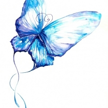 butterfly-پروانه (40)