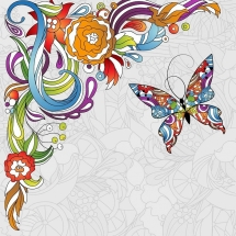butterfly-پروانه (79)