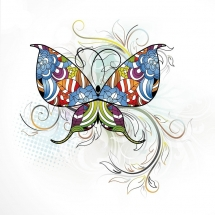 butterfly-پروانه (80)