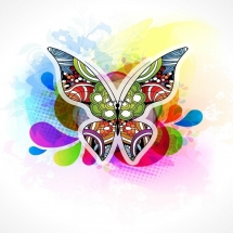 butterfly-پروانه (81)