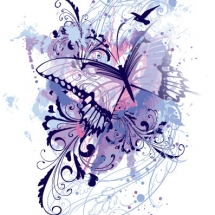 butterfly-پروانه (84)