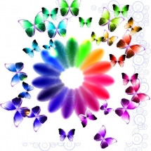 butterfly-پروانه (86)