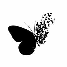 butterfly-پروانه (89)