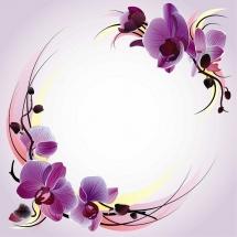 flower-گل (11)