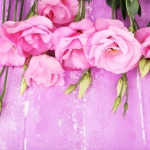 flower-گل (115)