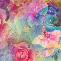 flower-گل (116)