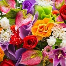 flower-گل (13)