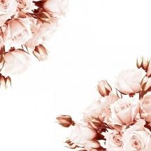 flower-گل (147)