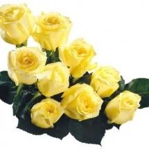 flower-گل (154)