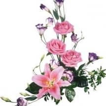 flower-گل (160)